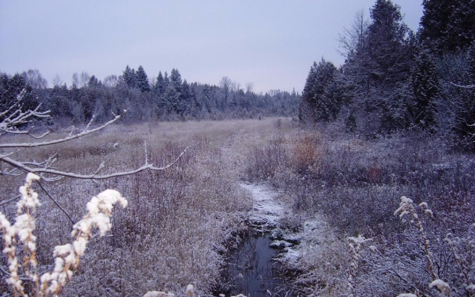 Winter-09-10-006-1