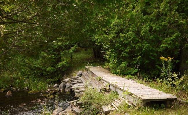 bridgetoredtrail